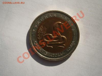 Красная книга 1992 г. - P9300055.JPG
