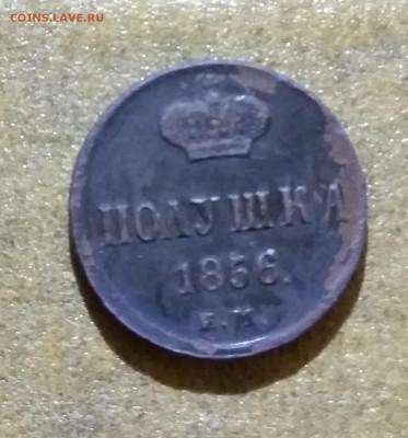 Полушка 1856 года - IMG_20210214_113322~2