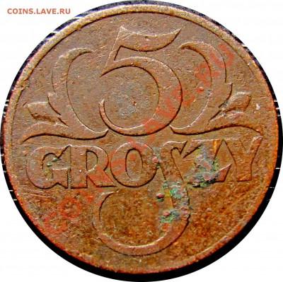 D47 Польша 5 грошей 1931 до 13.10 в 22°° - D47 5 1931_1