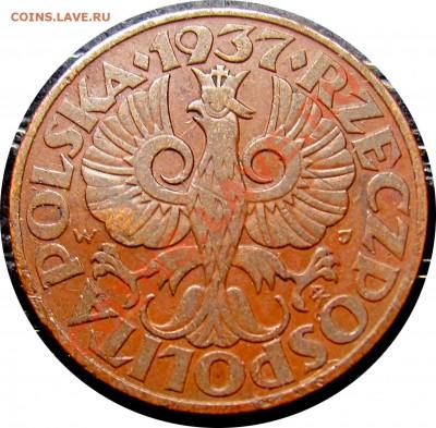 D49 Польша 5 грошей 1937 до 13.10 в 22°° - D49 5 1937_2