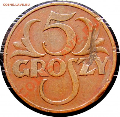 D49 Польша 5 грошей 1937 до 13.10 в 22°° - D49 5 1937_1