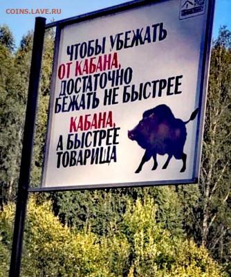 юмор - sATZ_SeB7lc