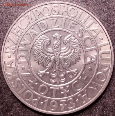 Польша - 106