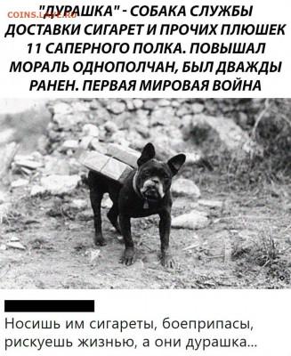 юмор - QkubG8vtnfo
