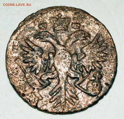 Денга 1731 год орел с шипами на лапах - нужна консультация - _DSC4701.JPG