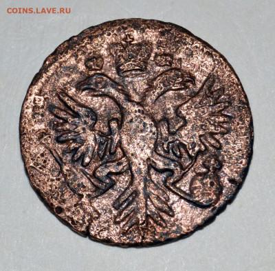 Денга 1731 год орел с шипами на лапах - нужна консультация - _DSC4703.JPG