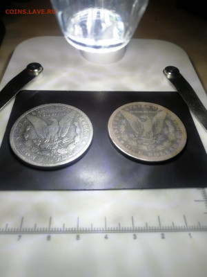 Желтые пятна на серебряной монете - IMG_20210421_070608_copy_768x1024