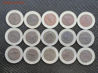Красная книга полный набор 15 монет. В коллекцию. До 05.05. - IMG-20210504-WA0007