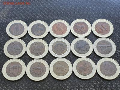 Красная книга полный набор 15 монет. В коллекцию. До 05.05. - IMG-20210504-WA0005