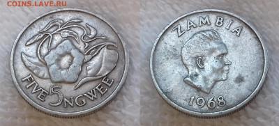 Монеты мира по фиксу - ЗАМБИЯ 5 нгве 1968 20191124_1246