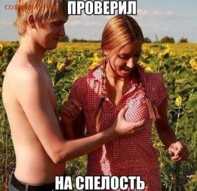 юмор - 41LQyiQvQEg