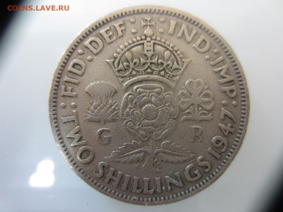 Много монет на подлинность и оценку (2) - IMG_1564.JPG