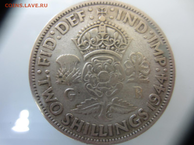 Много монет на подлинность и оценку (2) - IMG_1566.JPG