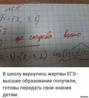 юмор - 63-prikolnye-kartinki_011