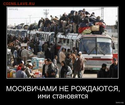 юмор - демотиваторы-про-москвичей-2