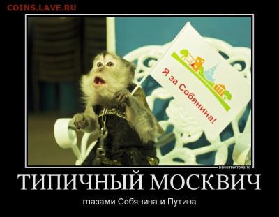 юмор - демотиваторы-про-москвичей-13
