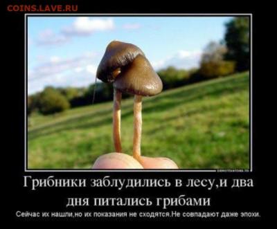 юмор - Прикольные-картинки-с-грибами-в-лесу-003