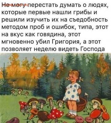 юмор - Грибы
