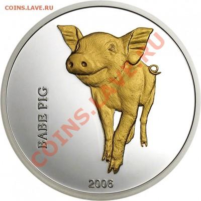 Монета в подарок - Babe_pig_rBig