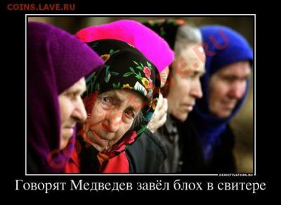 юмор - 866107_govoryat-medvedev-zavyol-bloh-v-svitere