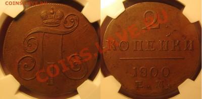 AU 58 - IMG_1829.JPG