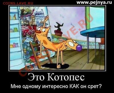 юмор - kotopes