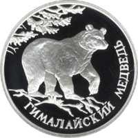 Гималайский медведь реверс