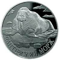 Лаптевский морж реверс