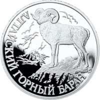 Алтайский горный баран реверс
