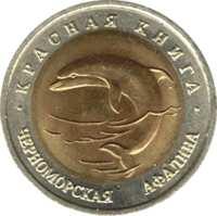 Черноморская афалина реверс